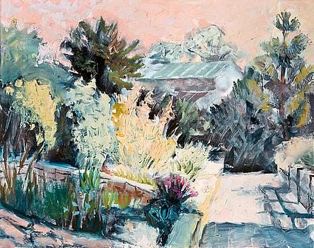 Arboretum Morning Light by Lisa Blackshear