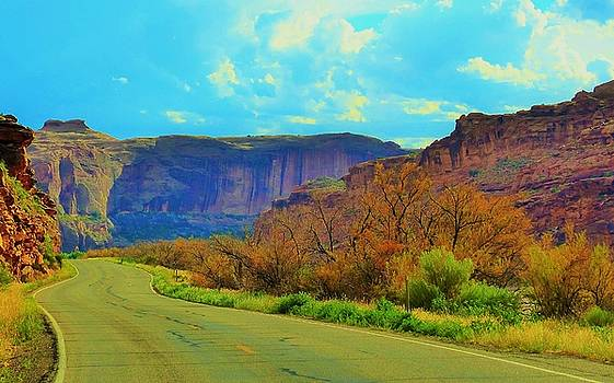 Arches National Park Road by Barkley Simpson