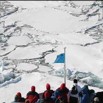 Arctic Explorer by Jim Kuhlmann