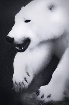 Arctic Polar Bear by David Millenheft