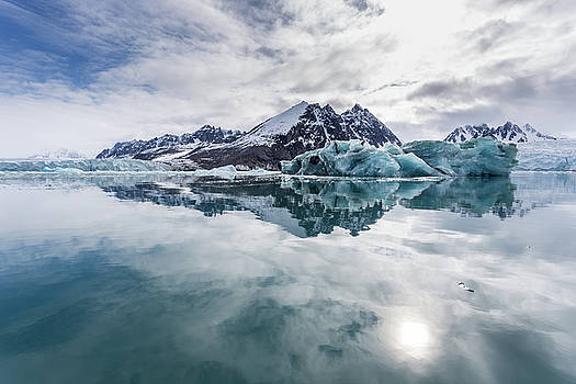 Arctic Reflections by Lauri Novak