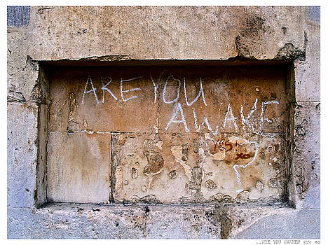 ARE YOU AWAKE  YES  xo by Jay Taylor