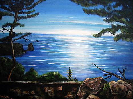 Arianes Seaview by Ingrid Dance