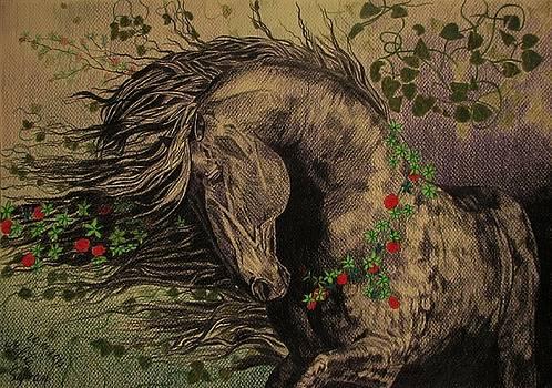 Aristocratic horse by Melita Safran