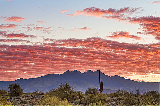 Arizona Four Peaks Mountain Colorful View by James BO Insogna