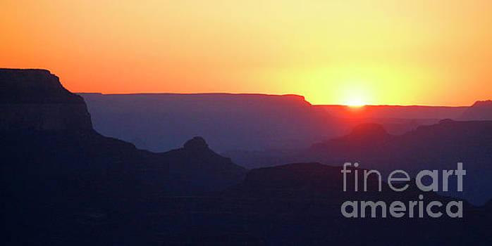 Arizona Sunset by Debbie Parker