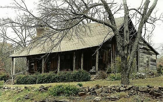 Arkansas Homestead by Marilyn Peterson