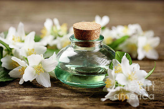 Aromatic Oil by Jelena Jovanovic
