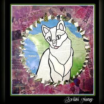 #art #collage #cats #thailand #kitty by Eman Allam