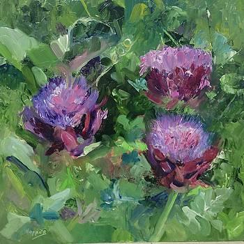 Artichoke Flowers by Carol Hopper