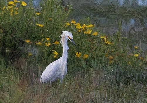 Artistic Egret by Elka Lange