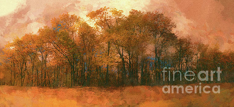 Dan Carmichael - Artistic Fall Colors in the Blue Ridge FX