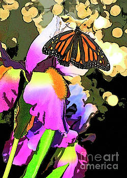 Artistic Iris and Butterfly  by Luana K Perez