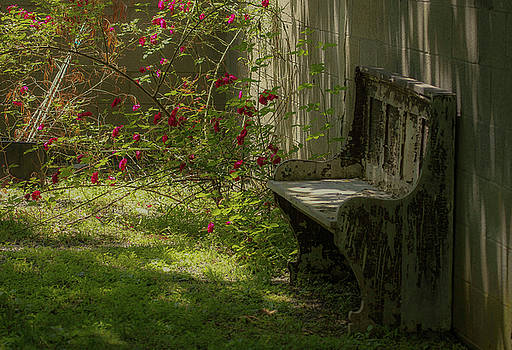As Time Goes By by Chris Burke