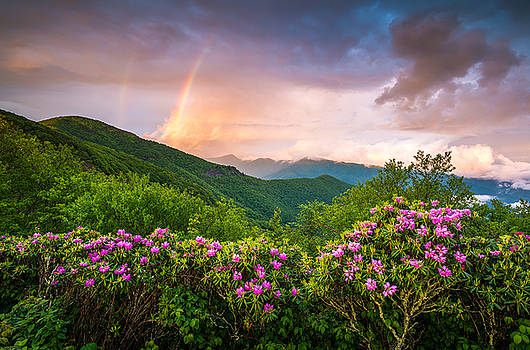 Asheville North Carolina Blue Ridge Parkway Scenic Landscape by Dave Allen