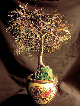Asian Golden Leaves - Wire Tree Sculpture  by Sal Villano