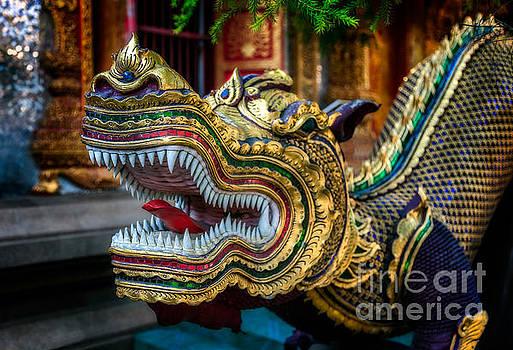 Adrian Evans - Asian Temple Dragon
