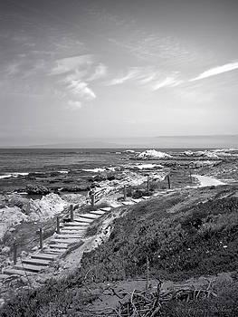 Joyce Dickens - Asilomar Beach Stairway In Black And White
