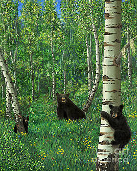 Aspen Bear Nursery by Stanza Widen