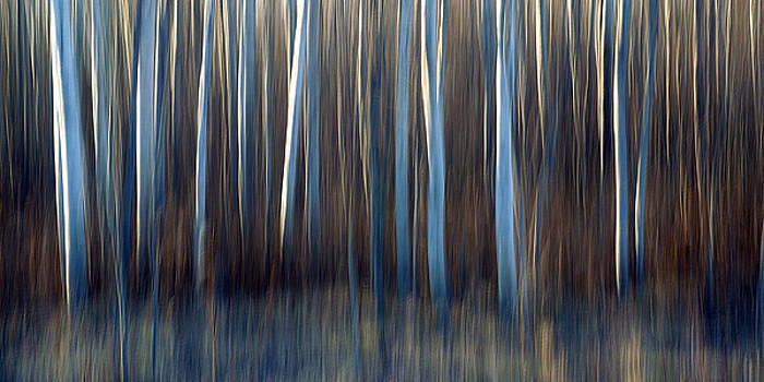 Aspen Blues by Bill Morgenstern