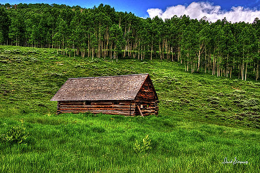 Aspen Cabin by David Simpson