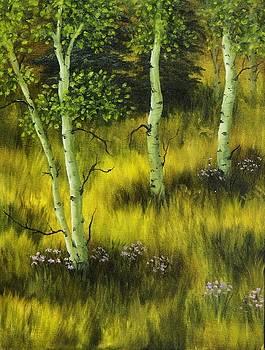 Aspen Meadow by Rick Bainbridge