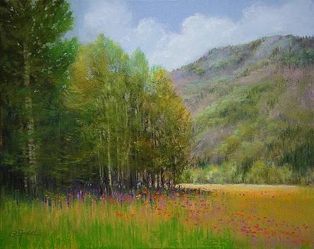 Aspen Valley by Paula Ann Ford