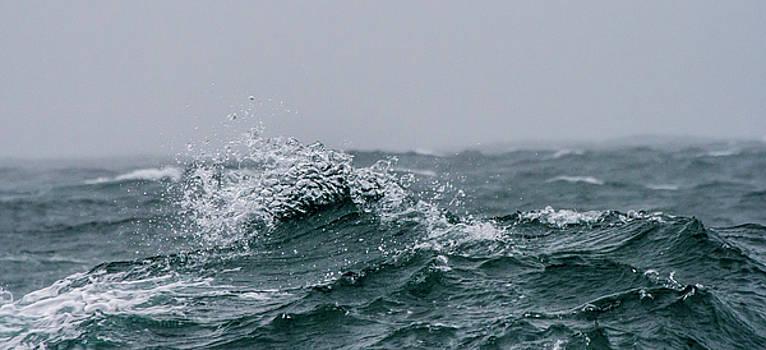 At Sea by Sophie De Roumanie