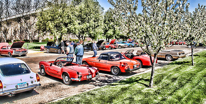 At The Car Show by Vicki McLead