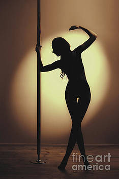 At The Pole by Amanda And Christopher Elwell