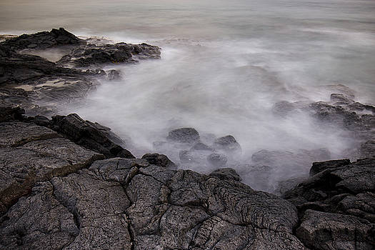 At Water's Edge by Windy Corduroy