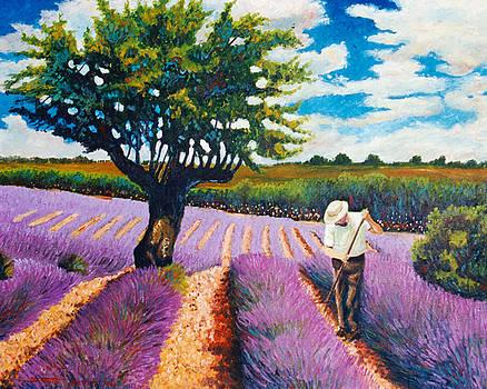 At work in lavender field by Santo De Vita