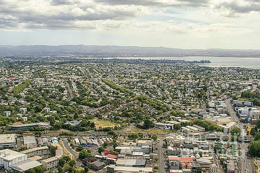 Patricia Hofmeester - Auckland city