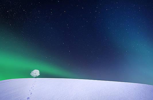 Aurora by Bess Hamiti