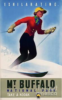 Australia Mt Buffalo Vintage Travel Poster by Carsten Reisinger