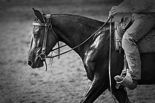 Michelle Wrighton - Australian Cowboy