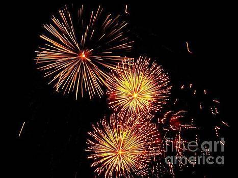 Australian Fireworks in Montreal 01 by Ausra Huntington nee Paulauskaite