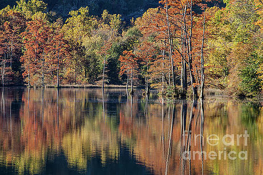 Autum at the Fork River by Iris Greenwell