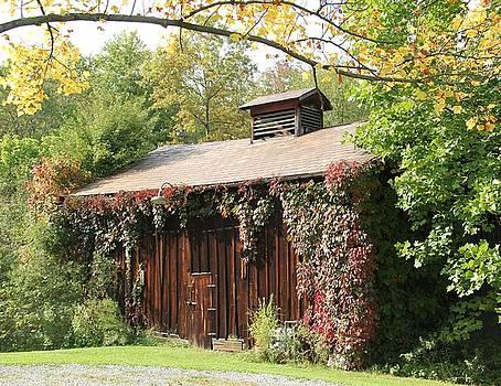 Autumn Antique Barn #4 by Donna Bosela