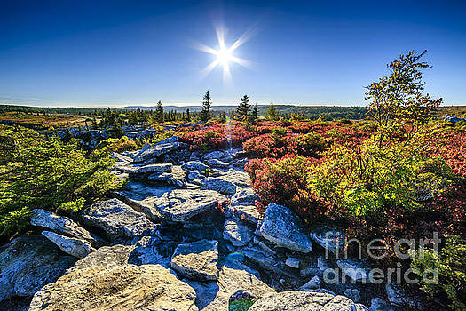 Autumn at Bear Rocks by Thomas R Fletcher