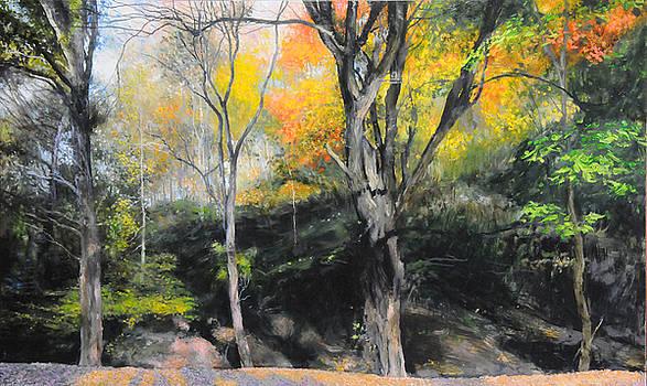 Harry Robertson - Autumn at Loggerheads