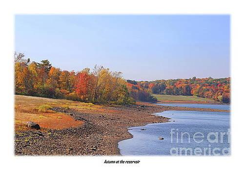 Autumn at the reservoir edge by Marcel  J Goetz  Sr