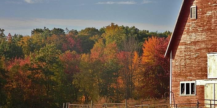 Autumn Barn by Diane Valliere