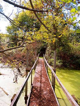 Autumn Bridge by Azthet Photography