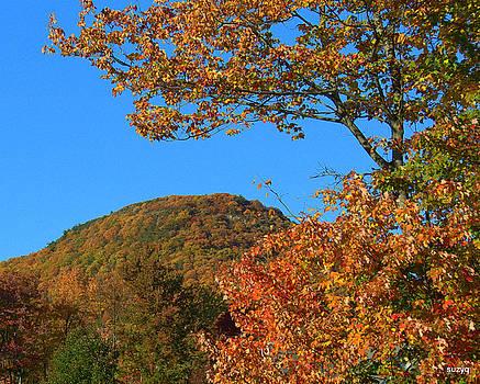 Autumn bright by Sue Rosen