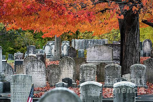 Autumn Cemetery by John Greim