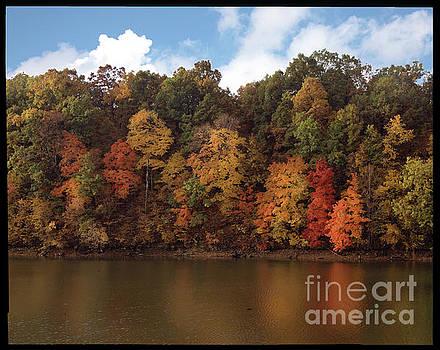 Autumn Color in the Ozarks, Southwest Missouri USA by Greg Kopriva