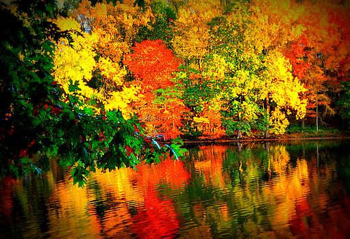 Autumn Colors 2015-1 by Aron Chervin