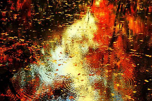 Autumn Colors 2015-4 by Aron Chervin