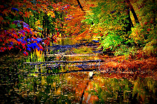 Autumn Colors 2015-5 by Aron Chervin